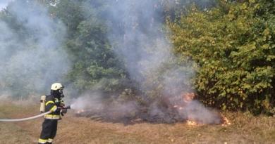 Beginnender Waldbrand nach Blitzschlag